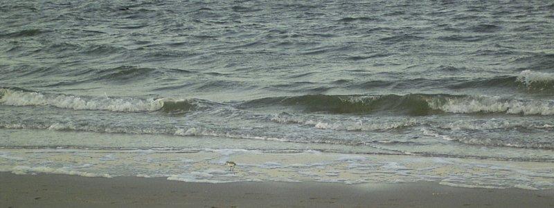 2003 und 2005: Das erste Mal Urlaub am Meer