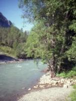 Holzgau1997-06