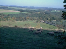 Eisenschmitt2001-14