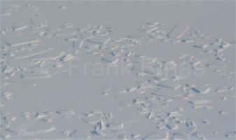 Groenland-Aerial2010 (16)