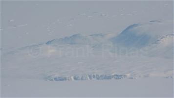 Groenland-Aerial2010 (26)