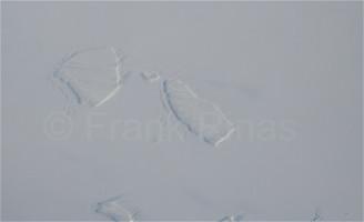 Groenland-Aerial2010 (3)