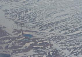 Groenland-Aerial2010 (96)