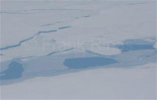 Nordpolregion2010 (10)
