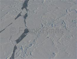 Nordpolregion2010 (31)
