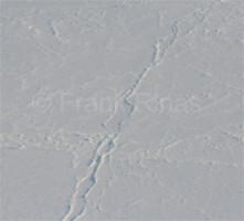 Nordpolregion2010 (32)