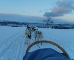 NOR - Tromso2008