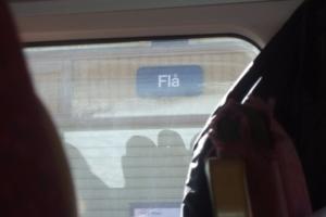 010-Fla2008