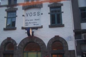 103-Voss2008