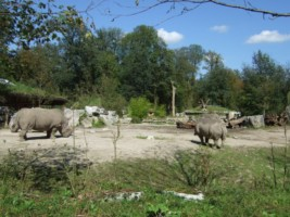 Austria - Salzburg - Zoo Salzburg-001