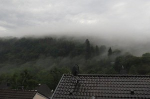 Heimbach2019-001
