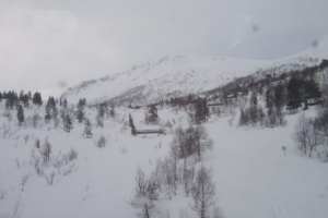 081-Myrdal_Voss2008