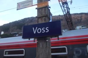 102-Voss2008